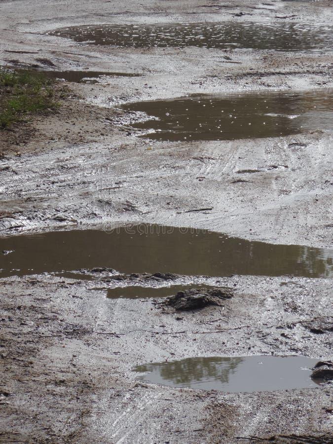 deszczówka w dziurach obrazy royalty free