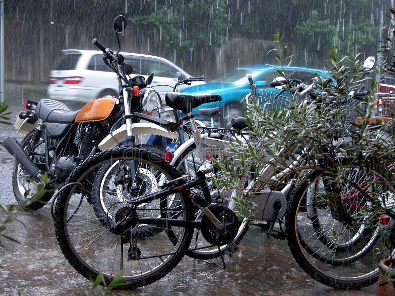 deszcz obraz royalty free