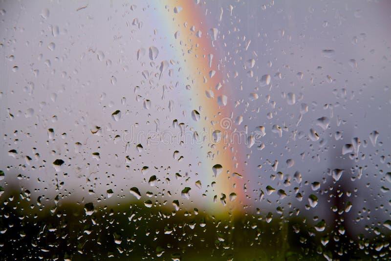 Deszcz opuszcza na gladd z tęczą w niebie obrazy stock