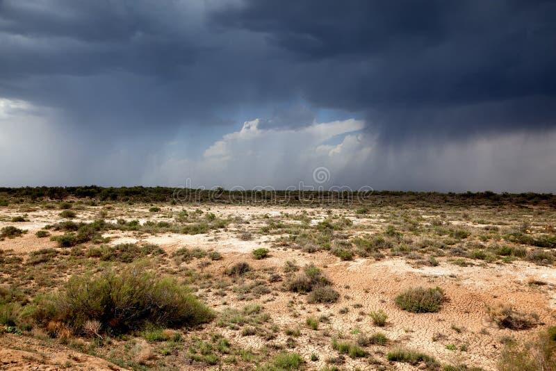 Deszcz w pustyni zdjęcia stock