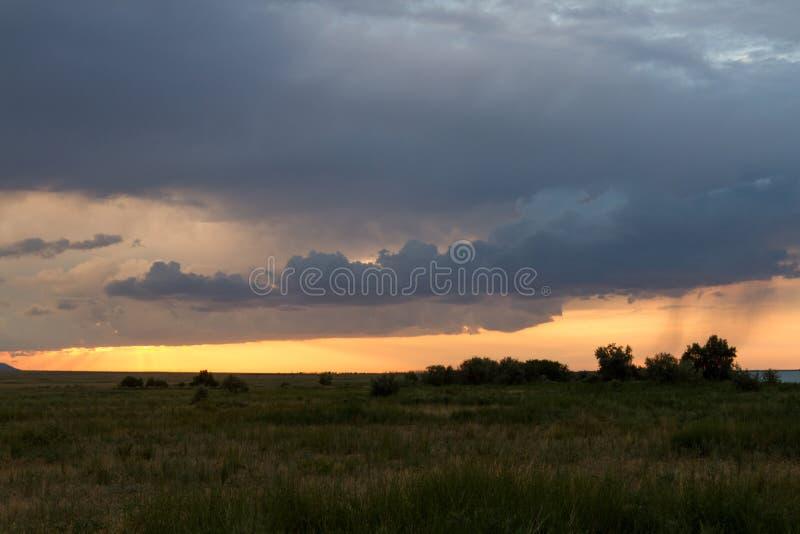 Deszcz w pustyni przy zmierzchem obraz stock