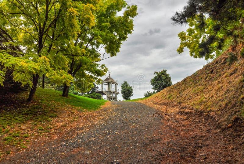 Deszczowy dzień w Parkowym Wilson Australia obraz stock