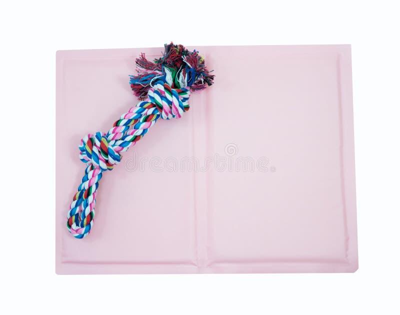 Det älsklings- repet för tugga och lek på kallt stelnar för att sova husdjuret royaltyfri bild