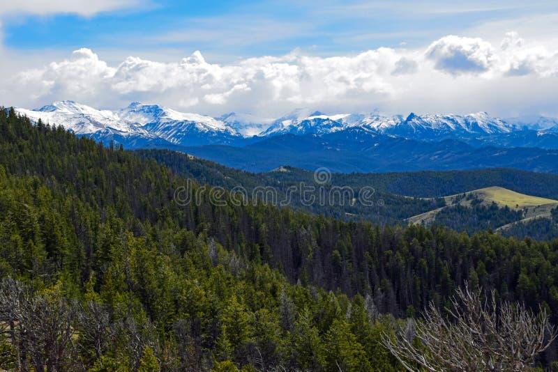 Det Absaroka området från scenisk huvudväg 296, Wyoming royaltyfri foto