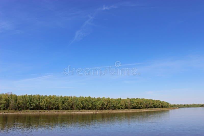 Det abstrakta landskapet med blå himmel, floden och skogen reflekterar i vattnet royaltyfri fotografi