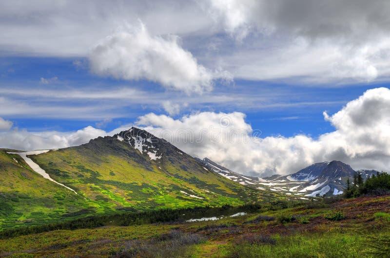 Det alaskabo berg beskådar royaltyfri fotografi