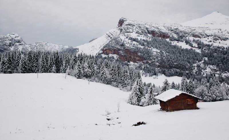 Det alpint landskap royaltyfria foton
