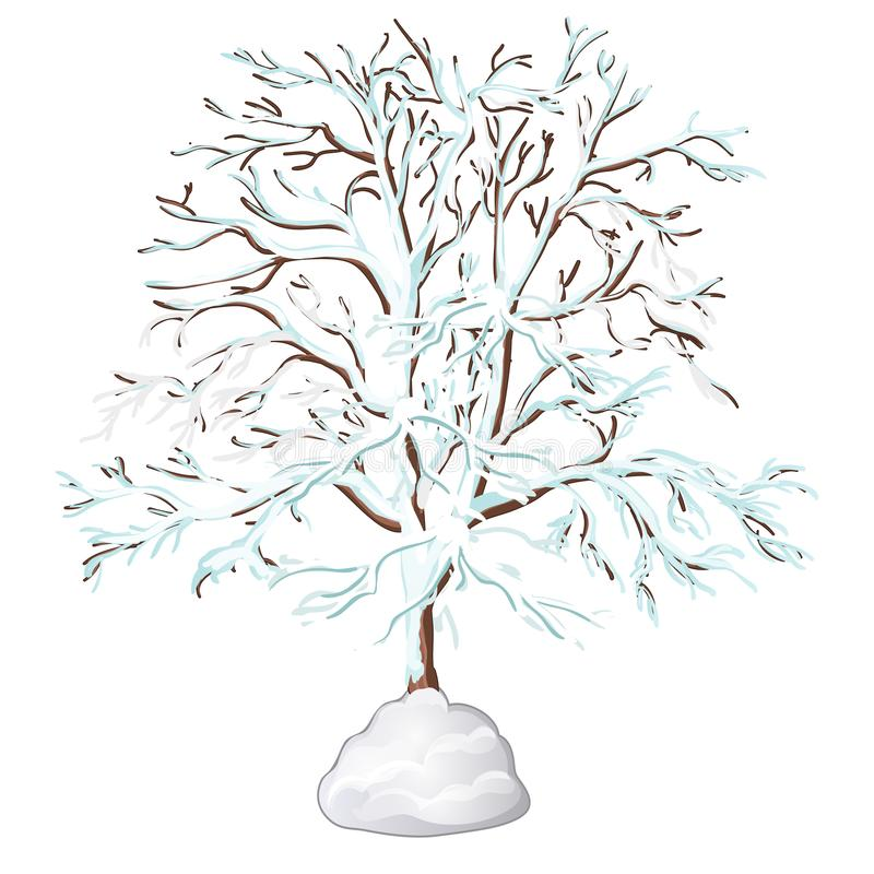 Det avlövade trädet som täckas med snö som isoleras på vit bakgrund också vektor för coreldrawillustration royaltyfri illustrationer