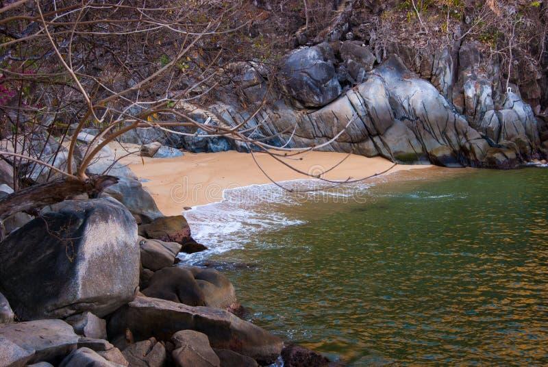 Det avskilt tömmer stranden royaltyfri foto