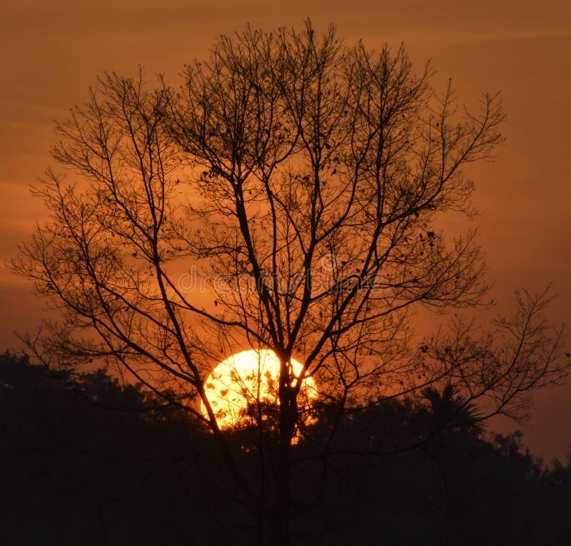 Det bästa solnedgångfotografiet med Nikon D3400 arkivbilder
