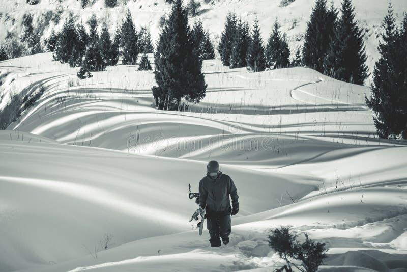 Det Backcountry affärsföretaget som övervintrar fjällängar, Snowboarder går royaltyfria foton