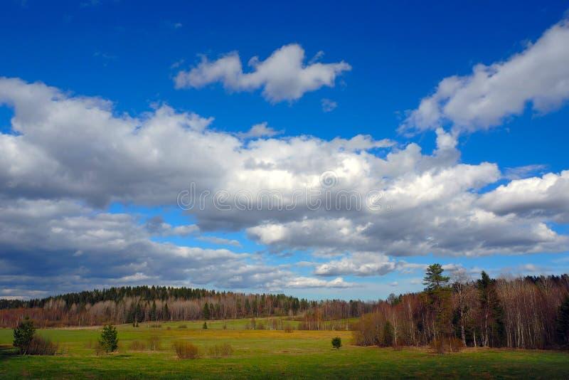 Det bergiga landskapet av den nordliga naturen arkivfoto