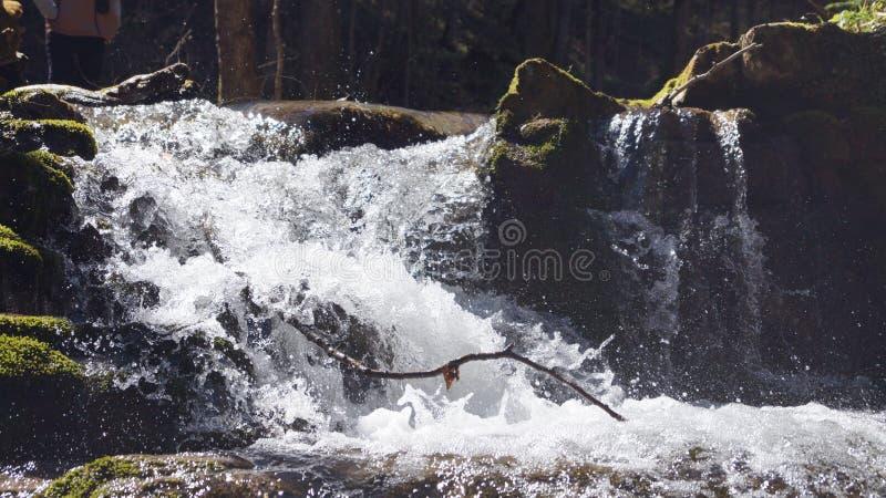 Det bosatta vattnet av bergen royaltyfri foto