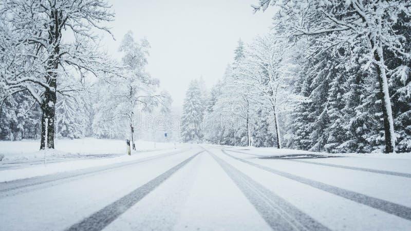 Det breda skottet av en väg som täckas fullständigt av snö med, sörjer träd på både sidor, och bilen spårar royaltyfria foton