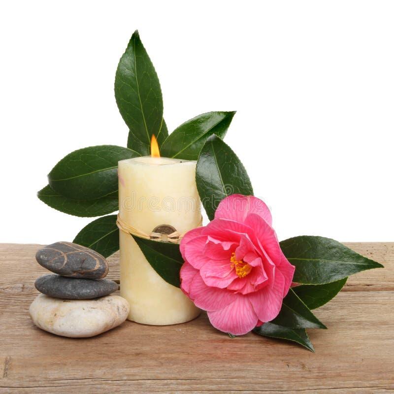 Stearinljus och camellia arkivfoton
