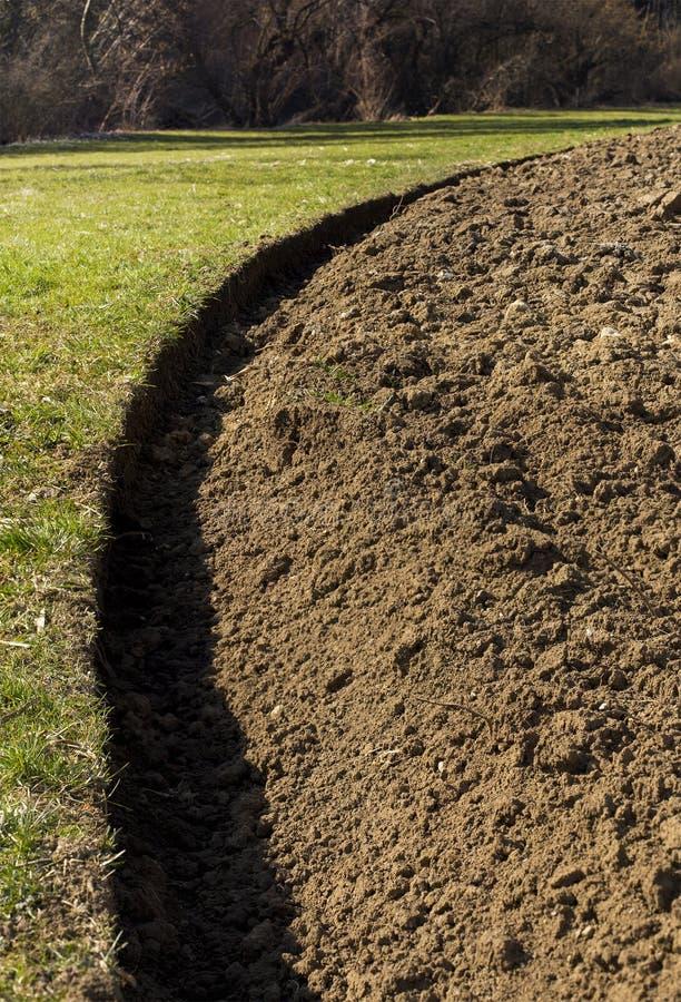 det brown odlade fältfårahorisontallandet smutsar sikt arkivbild