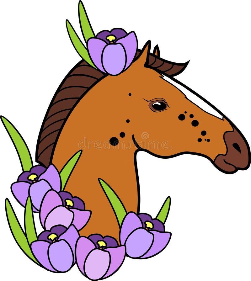 Det bruna hästhuvudet med purpurfärgad krokus blommar på vit bakgrund vektor illustrationer