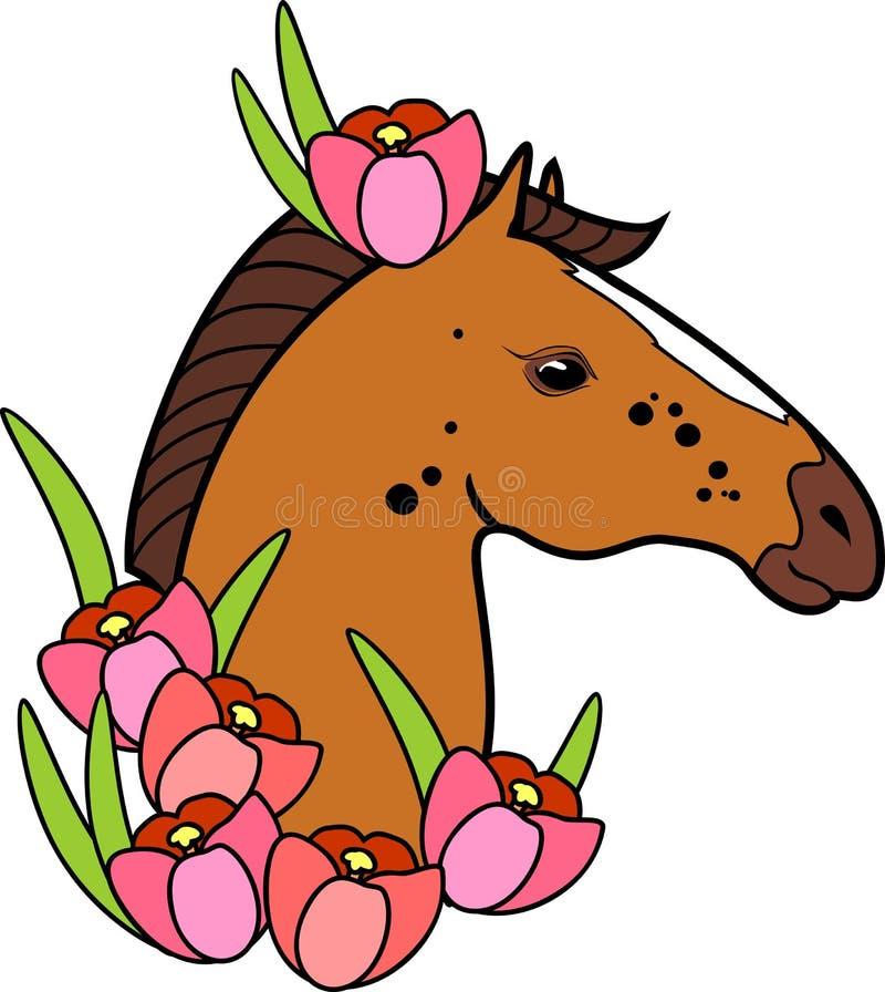 Det bruna hästhuvudet med rosa krokus blommar på vit bakgrund royaltyfri illustrationer