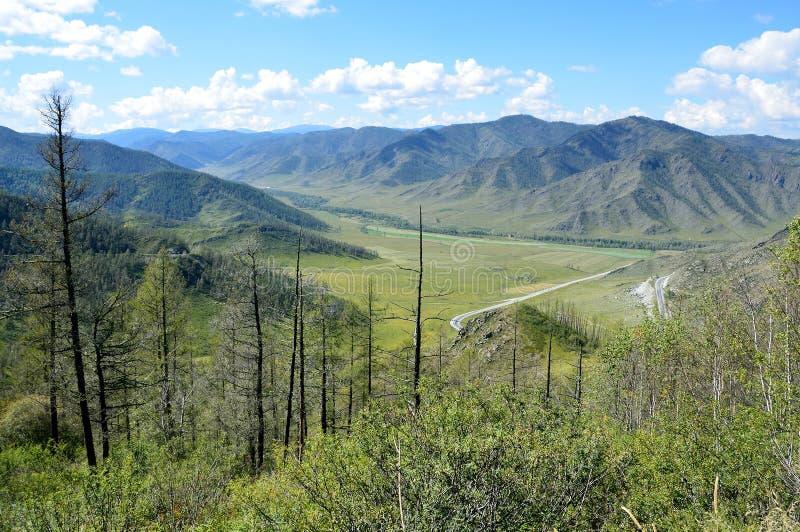 Det Chike-Taman passerandet 1400m, Ryssland, republik av Altai royaltyfri bild
