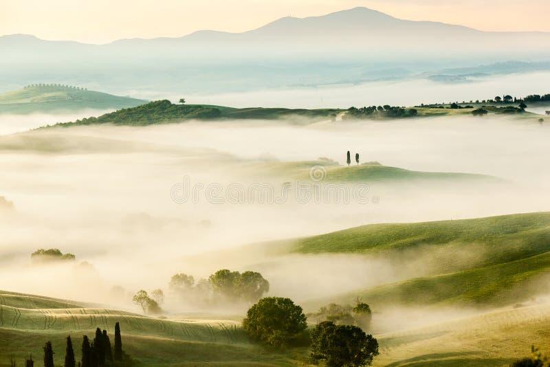 Det dimmiga landskapet för saga av Tuscan fält på soluppgång royaltyfria bilder