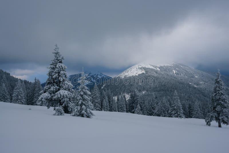 Det dramatiska landskapet - övervintra aftonen i bergen på helgdagsaftonen royaltyfria bilder