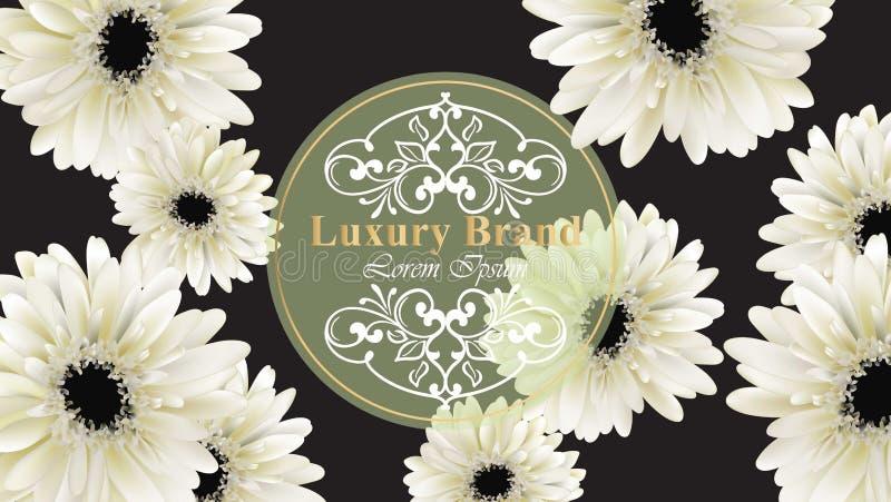 Det eleganta lyxiga affärskortet med den Gerber tusenskönan blommar vektorillustrationen Abstrakt svart bakgrund stock illustrationer