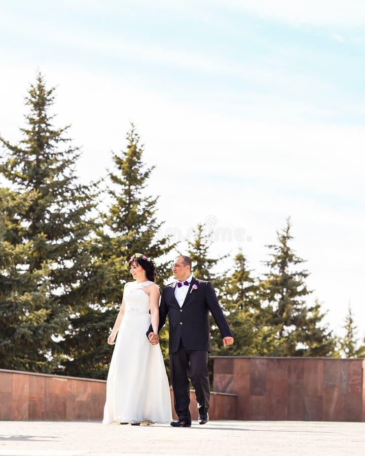 Det eleganta stilfulla barnet kopplar ihop den härliga bruden och brudgummen på trappan royaltyfri fotografi