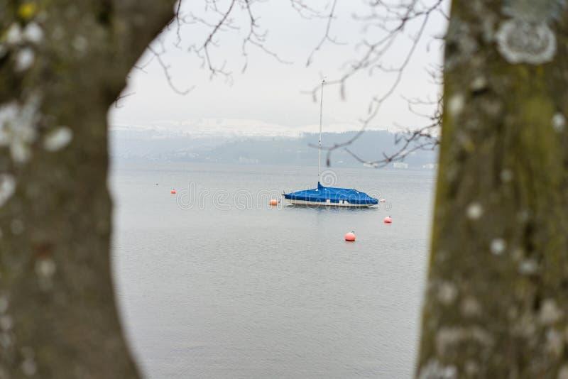 Det enkla fartyget som ses till och med träd på sjön, fördunklar dimmigt väder, melankoliskt lynne royaltyfria bilder