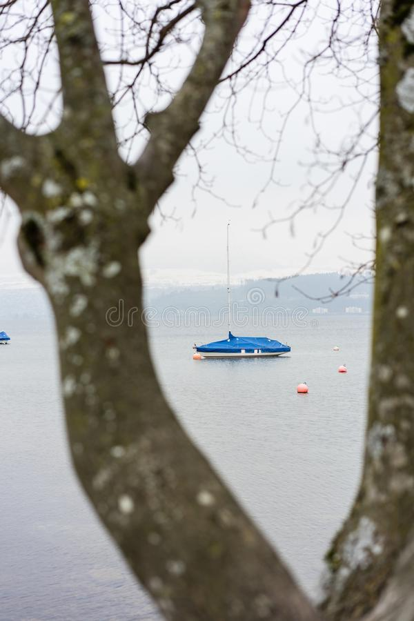 Det enkla fartyget som ses till och med träd på sjön, fördunklar dimmigt väder, melankoliskt lynne fotografering för bildbyråer