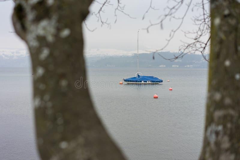 Det enkla fartyget som ses till och med träd på sjön, fördunklar dimmigt väder, melankoliskt lynne arkivfoto