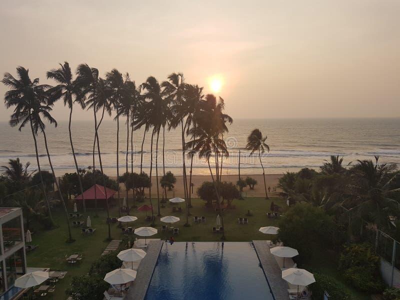 Det exotiska hotellet med simbassängen och gömma i handflatan på stranden av havet, Sri Lanka, strand arkivfoto
