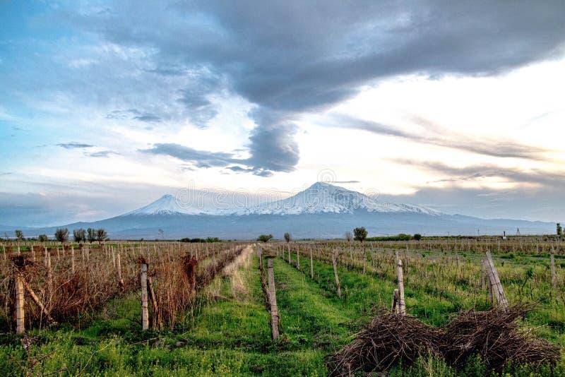 Det fantastiska berget Sis, som ingår i berget Ararat, Armenien royaltyfria bilder