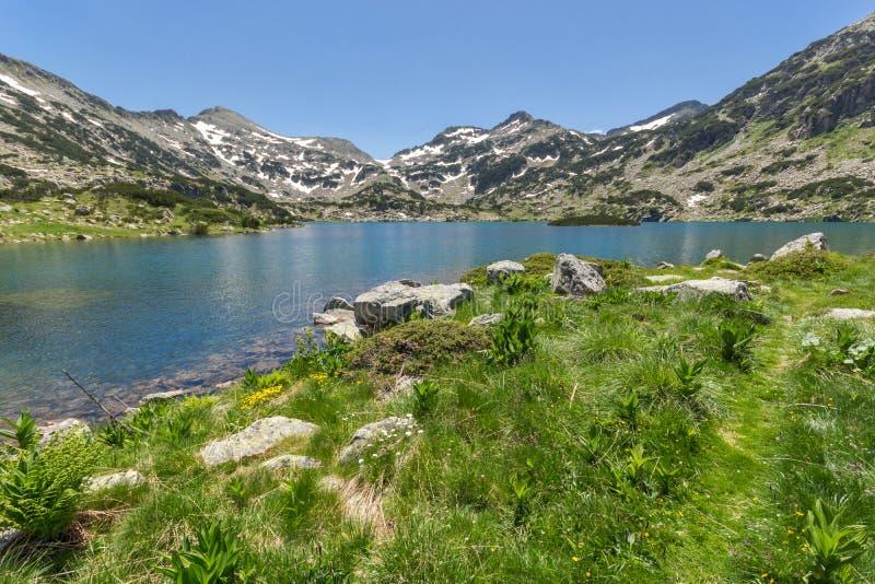 Det fantastiska landskapet av den Demirkapiyski chukien och Dzhano når en höjdpunkt, Popovo sjön, det Pirin berget royaltyfri fotografi