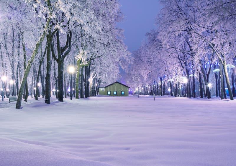 Det fantastiska vinterlandskapet i afton parkerar Loge ljusa lyktor, royaltyfri bild