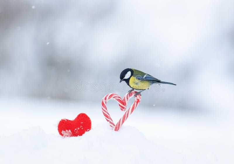 Det festliga hälsa kortet med en gullig sångfågel flög in och satt ner på röda älskling-formade klubbor i vit snö på valentin fotografering för bildbyråer
