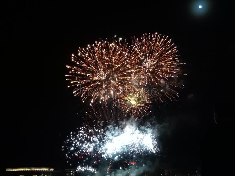 Det Feuerwerk fyrverkerit beskjuter trevligt och kallt royaltyfri foto