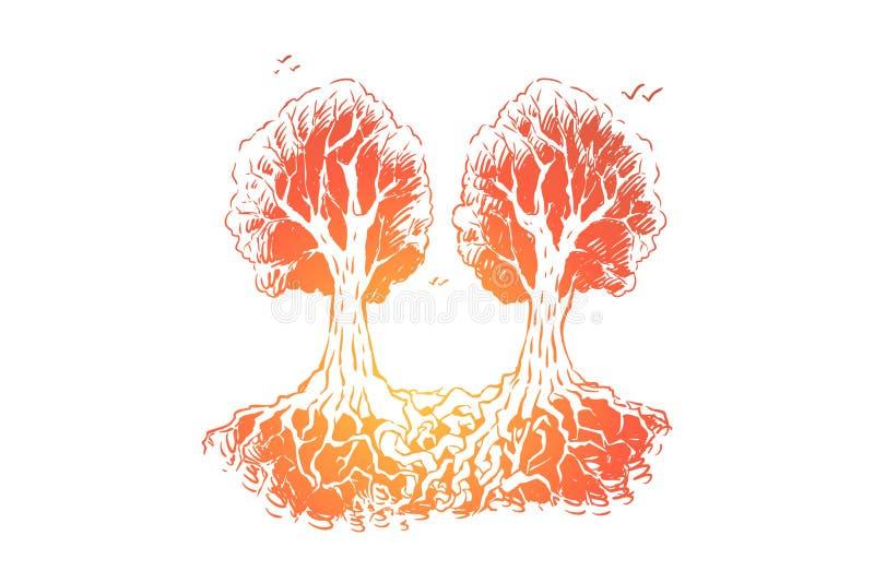 Det flätade samman trädet rotar, oskiljaktiga objekt, metafor för för evigt tillsammans stock illustrationer