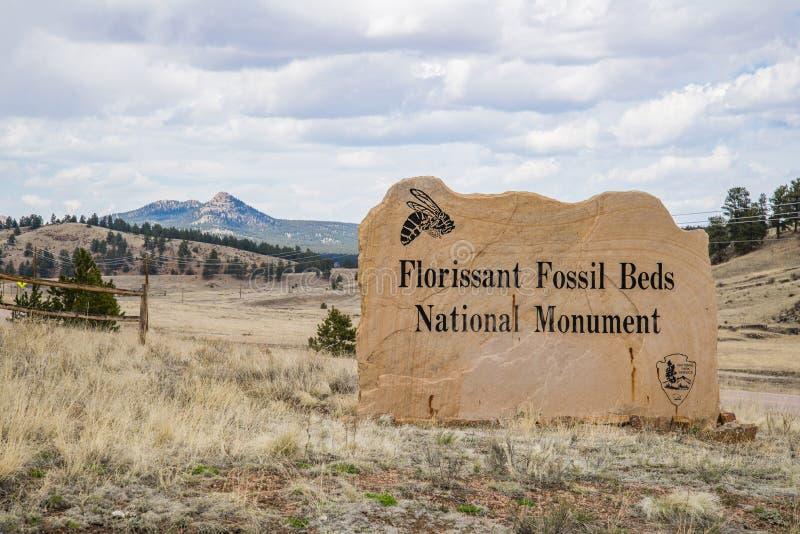 Det Florissant fossilet bäddar ned den nationella monumentet royaltyfri bild