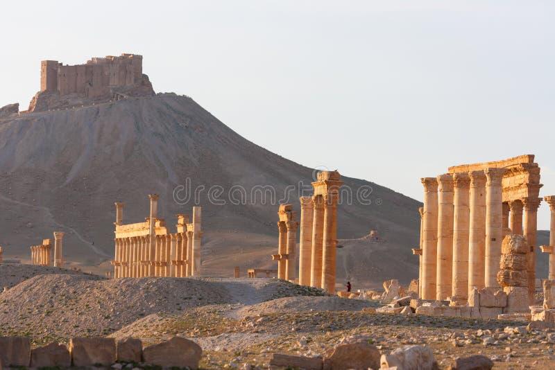 Det forntida fördärvar av palmyraen, Syrien royaltyfri bild