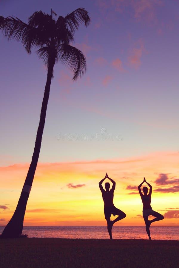 Det fridfulla yogafolket som utbildar i solnedgång i träd, poserar royaltyfri fotografi