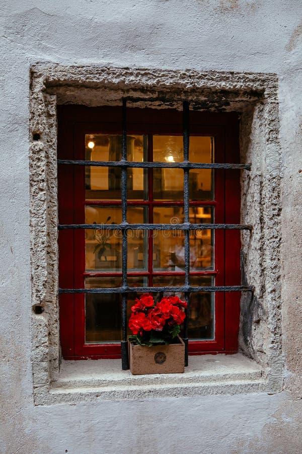 Det gamla fönstret för stenhus` som s dekoreras med den färgrika petunian, blommar i medeltida gammal stad av Tallinn, Estland arkivbilder