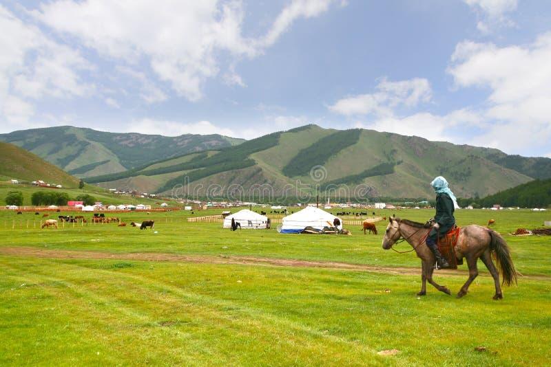 Det ger lägret i en stor äng på Ulaanbaatar, Mongoliet arkivfoto