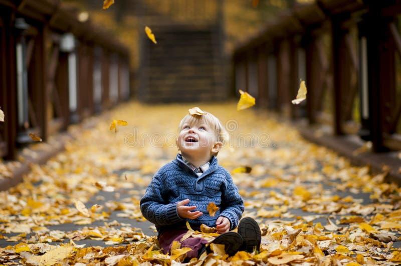 Det glade barnet beundrade vid nedgången av lövverk arkivbilder