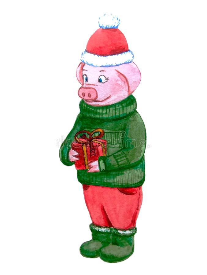 Det gladlynta piggy teckenet i en röd hatt och en grön tröja rymmer i hans tafsar en härlig gåva med band royaltyfri illustrationer