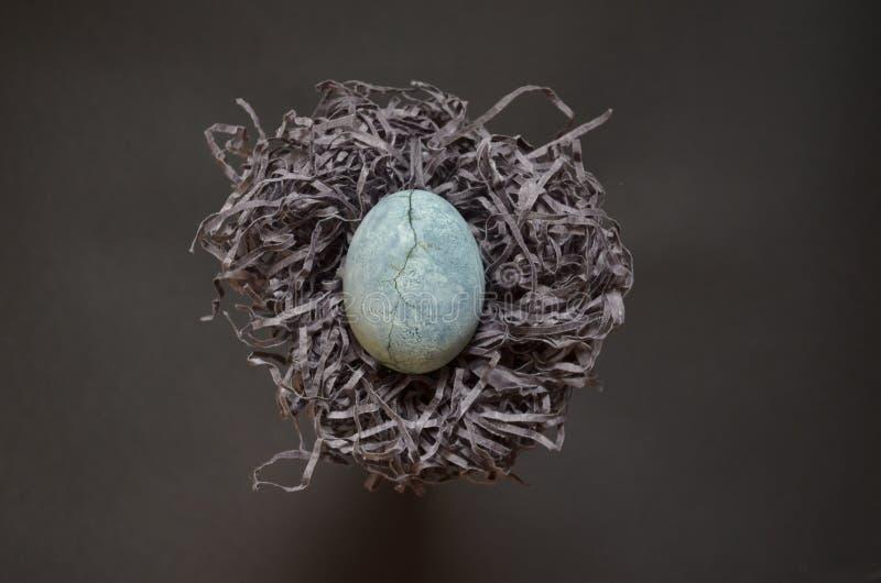 Det gråa ägget med sprickan som målas i tehibiskus, ligger på pappers- liknande till ett rede av hö på grå bakgrund, med copyspac arkivfoto