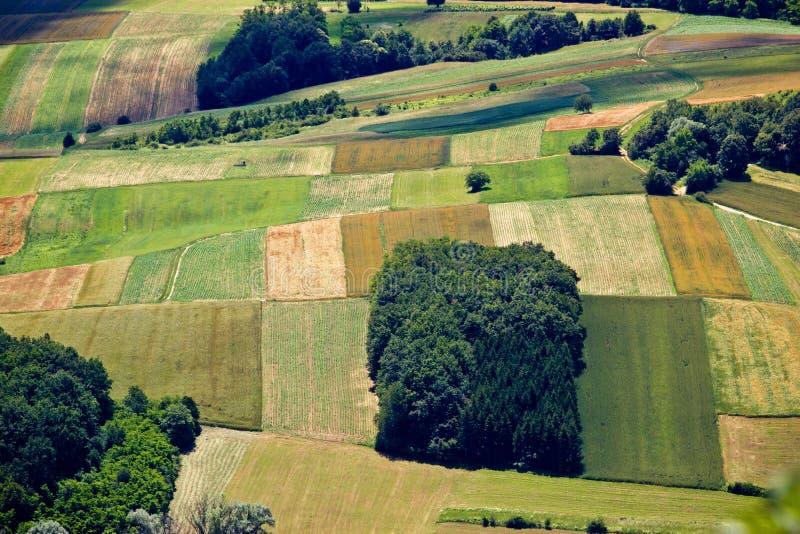 Det gröna fältet i lager flyg- sikt royaltyfri foto