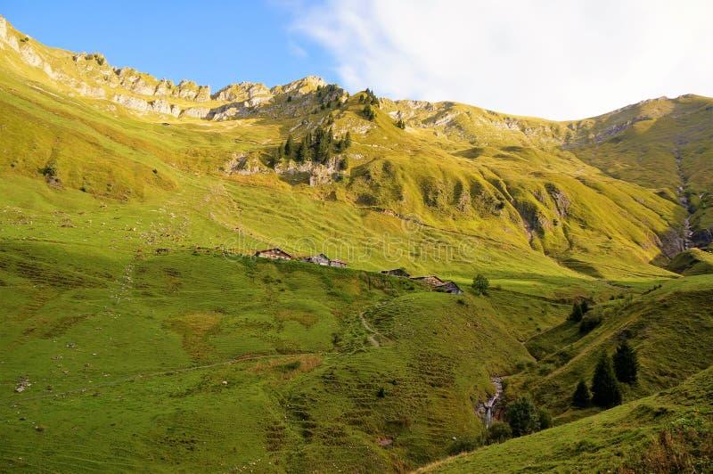 Det gröna fältet med berget Taget från Brienzer Rothorn bahn på vägen upp till Brienzer Rothorn, royaltyfria bilder