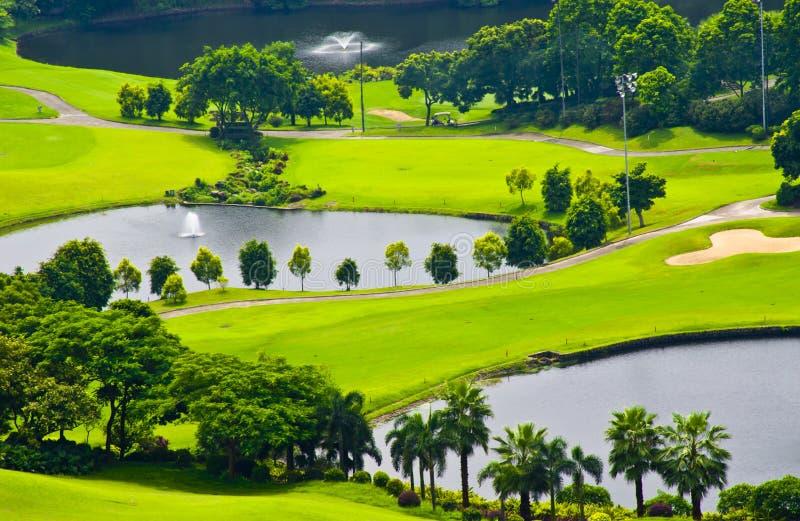 Det gröna gräset och träden på en golfbana arkivbilder