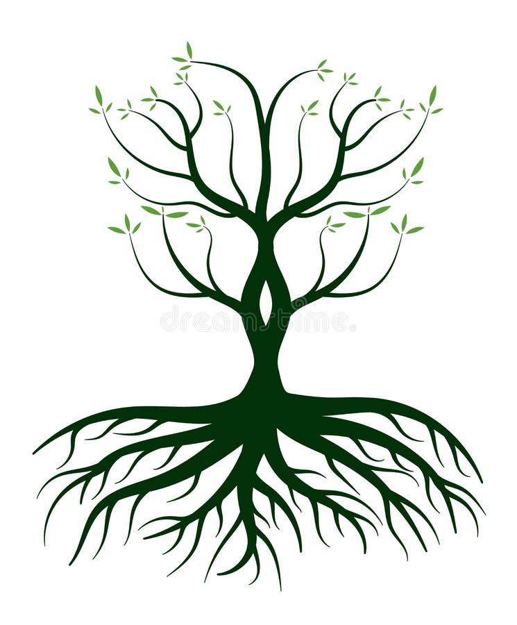 Det gröna trädet rotar på Logo Icon stock illustrationer