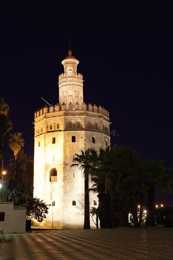 Det guld- tornet royaltyfri fotografi